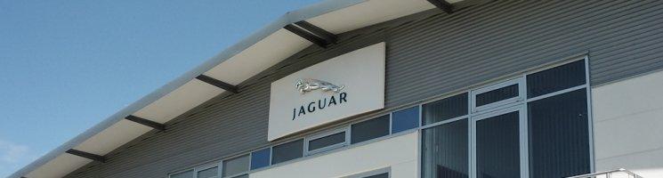 Die Katzen von der Insel machen alles richtig! Jaguar im Bloglight August 2012